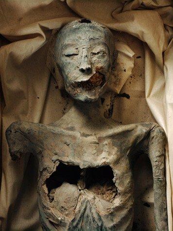 Momia de la Dama Joven