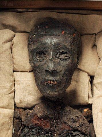 Momia de Tutankam?n