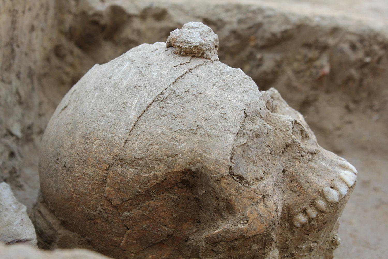 ullastret 1500x1001 - Exponen las cabezas cortadas del yacimiento íbero de Ullastret