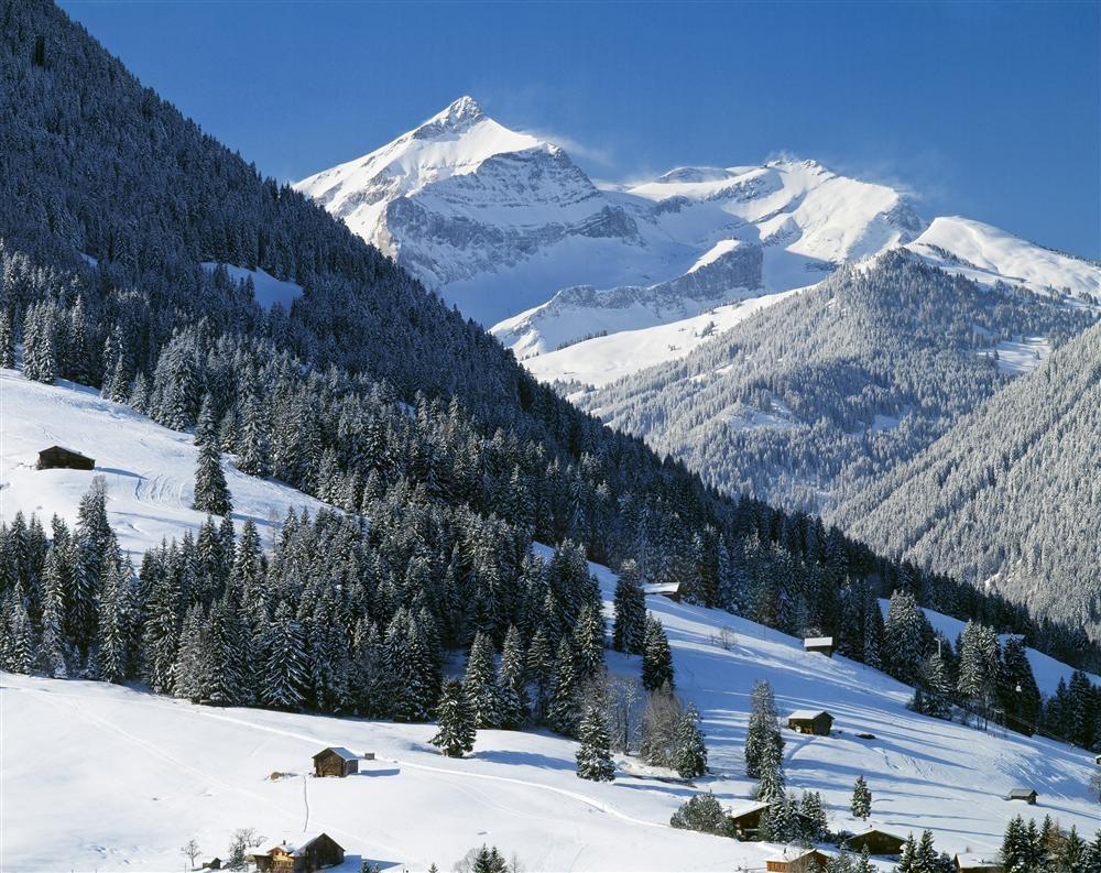 77020134. Valle de Gstaad