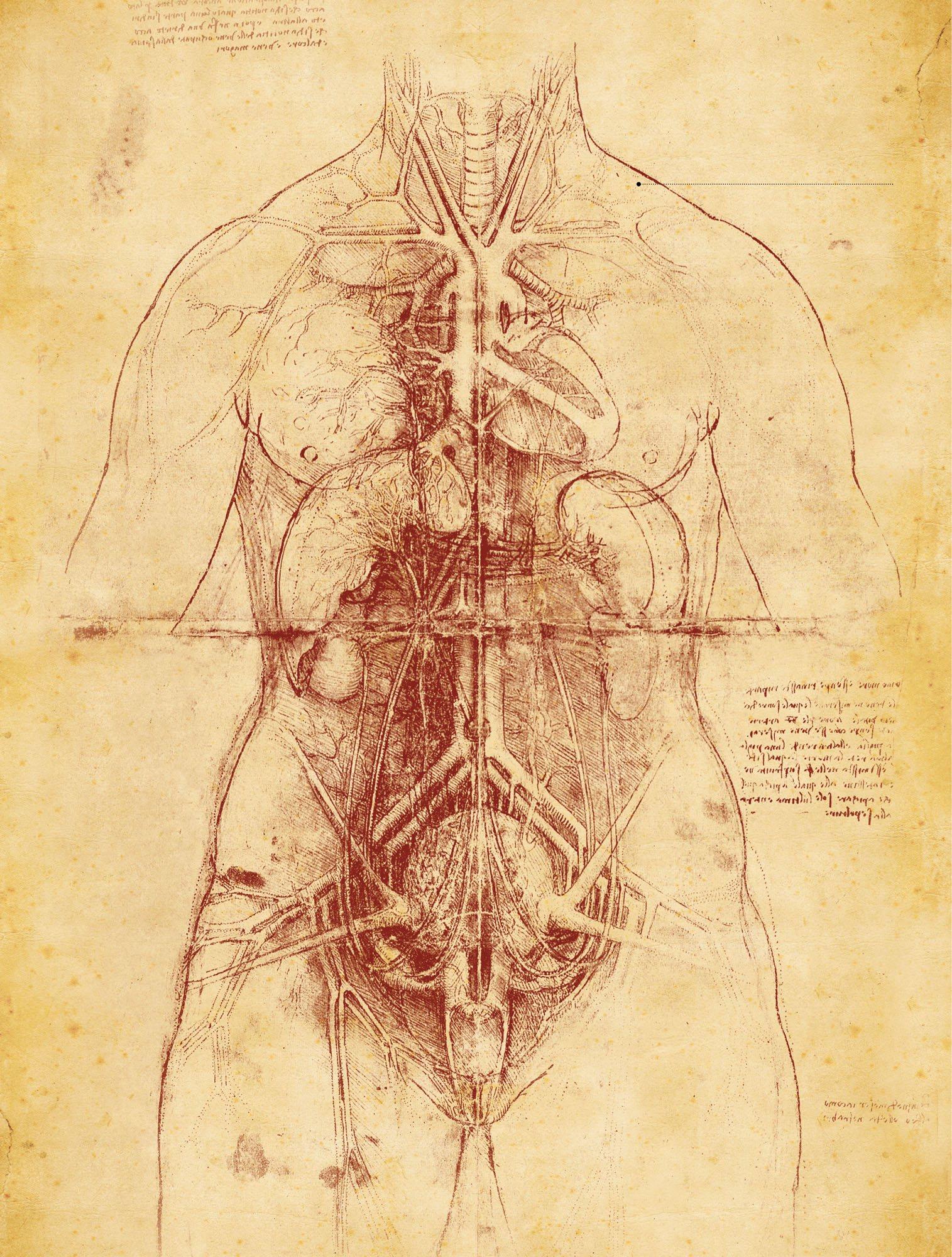 Leonardo da Vinci, un visionario de la ciencia, un hombre adelantado ...
