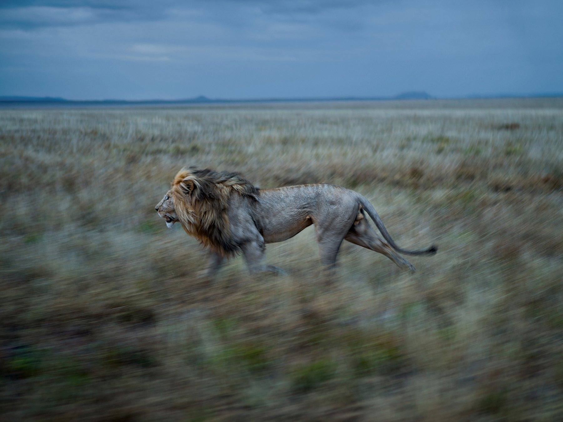Nosotros Y Ellos National Geographic Mm
