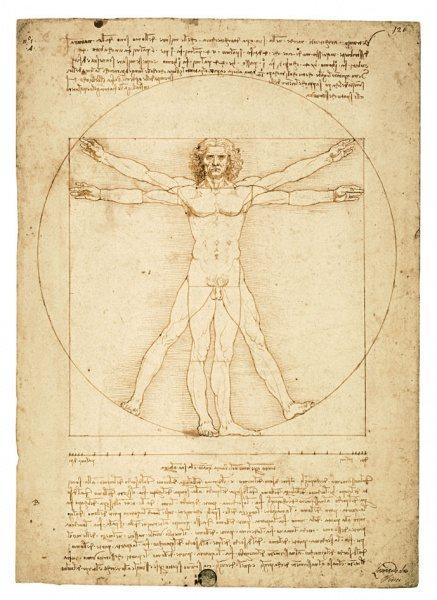 «Leonardo da Vinci. El hombre universal»
