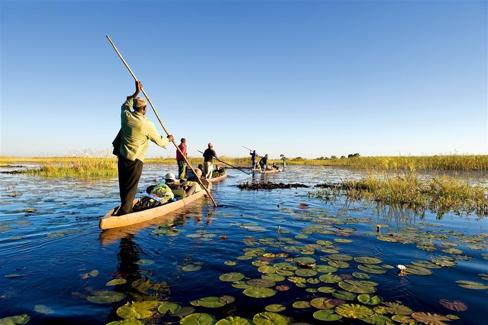 a00625752 015. Safaris por tierra y agua