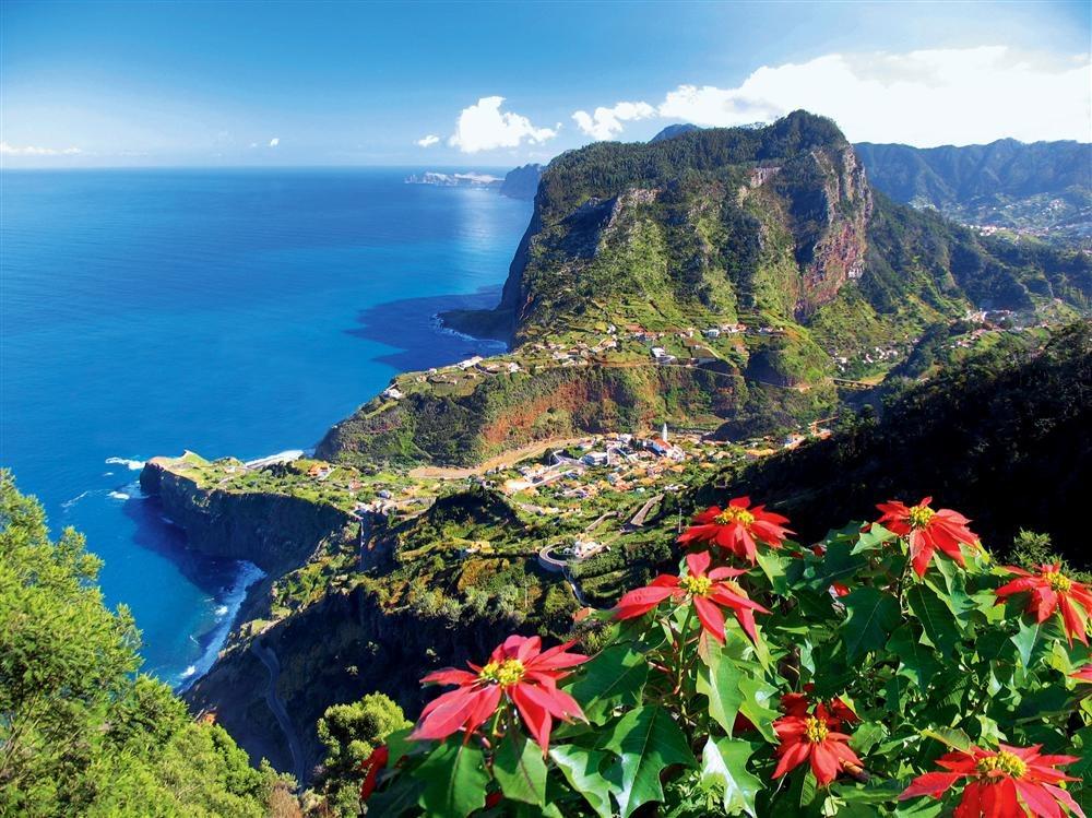 20417049. Madeira, fiesta de la flor en la isla jardín