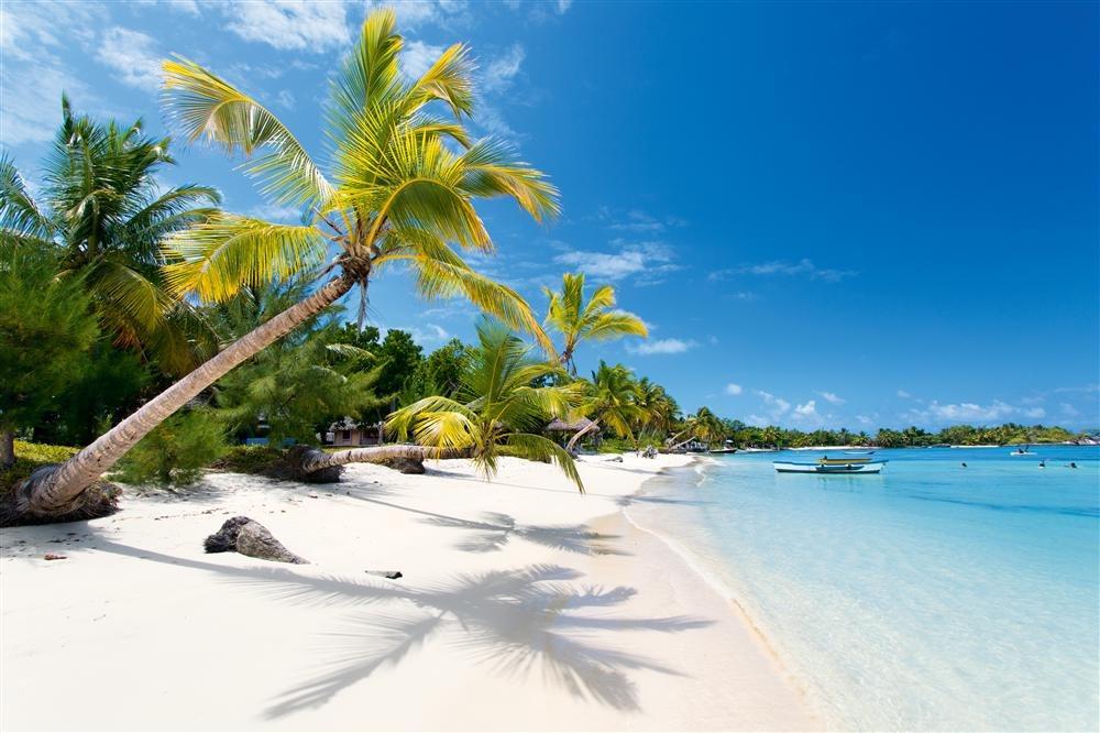 ST6A2456. Playas de coral