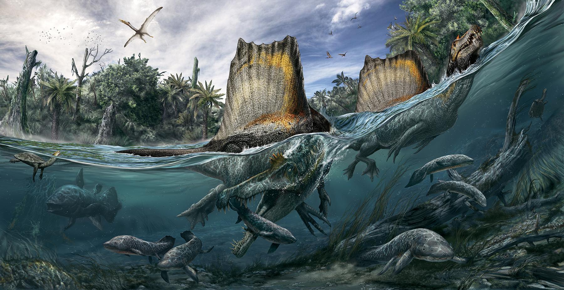 Reconoces a estos dinosaurios?