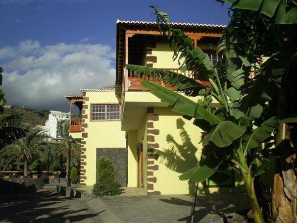 MUSEO DEL PLATANO 1. Plátano de Canarias