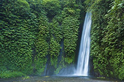 Cascada de Git Git, Bali