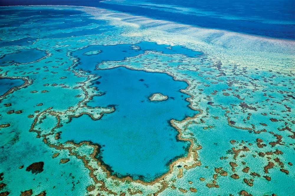 42-53458311. Gran Barrera de Coral