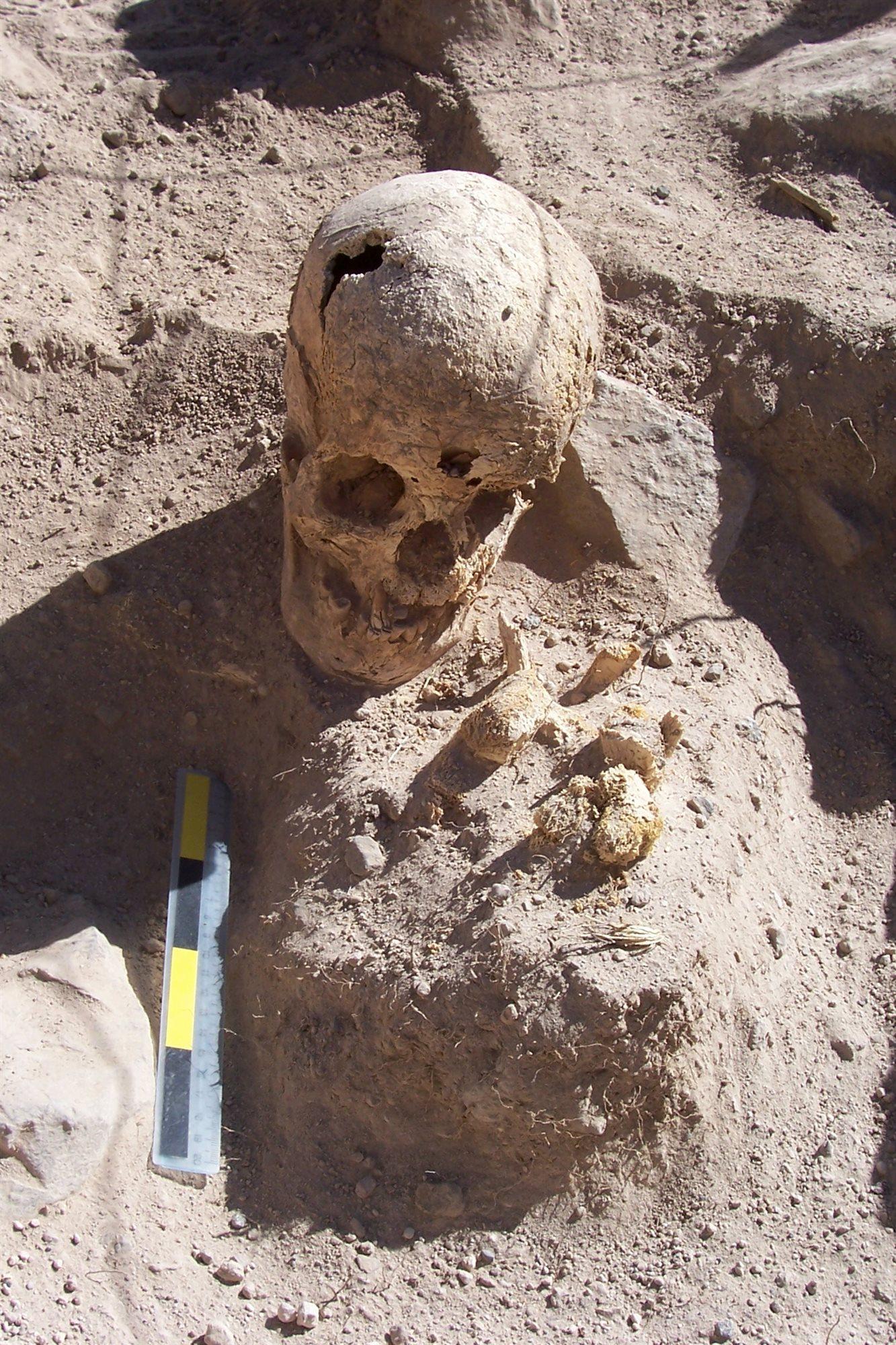 ontario human remains found - 667×1000