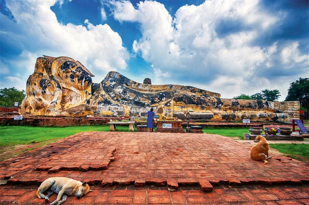 smerindo Sleeping Buddha and Sleeping Dog HighRes. Ayutthaya