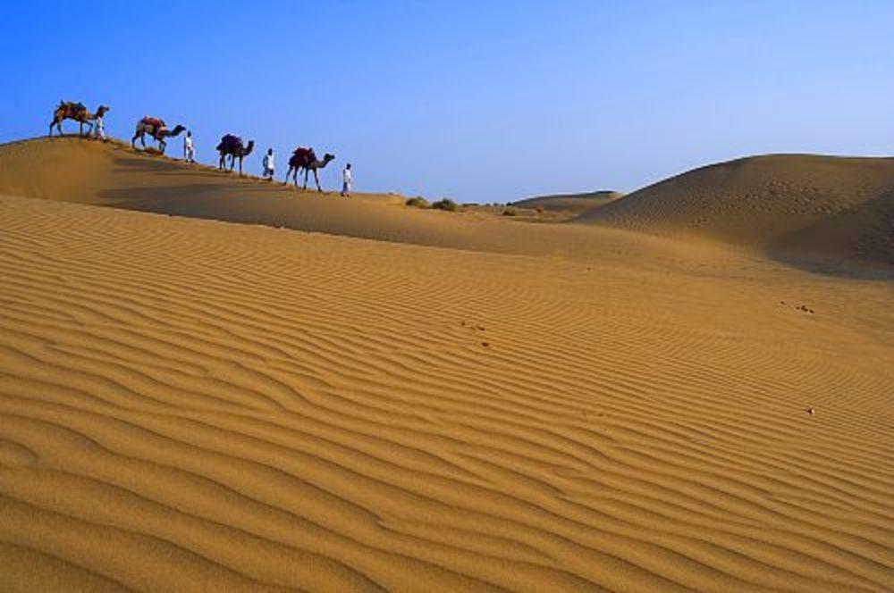 Desierto de Thar. India. Desierto de Thar (India)
