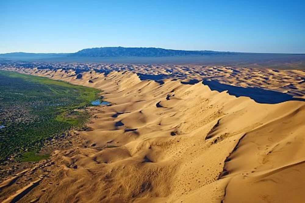 Dunas de Khongoryn Els. Mongolia . Dunas de Khongoryn Els (Mongolia)
