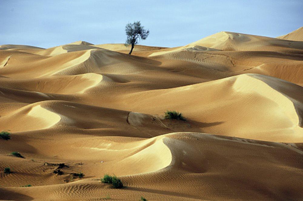 Dunas de Tozeur. Túnez. Dunas de Tozeur (Túnez)