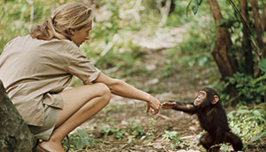 Jane Goodall visita Barcelona invitada por National Geographic