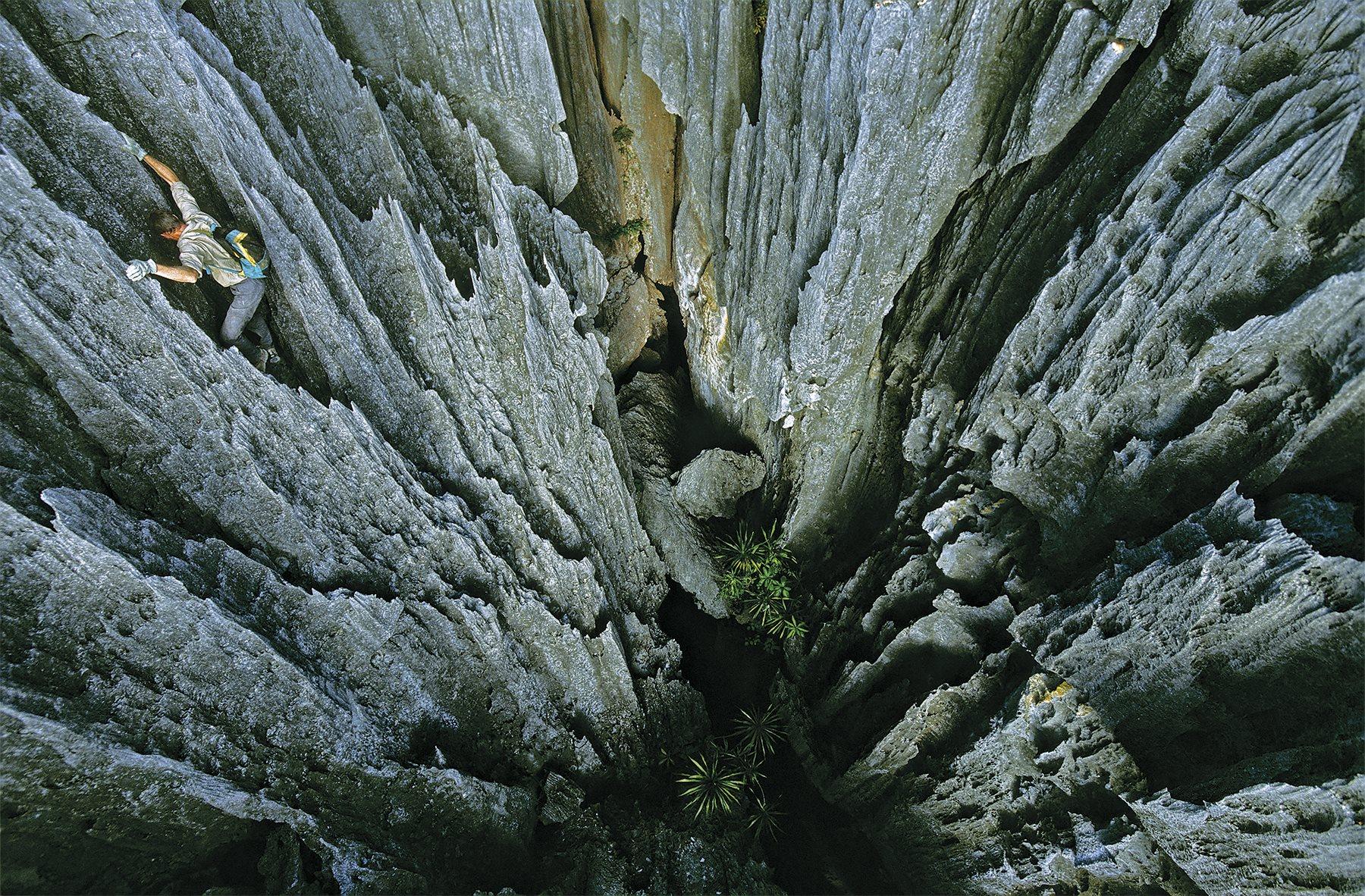 Bosque de Piedras (Madagascar) Naturaleza Hermosa