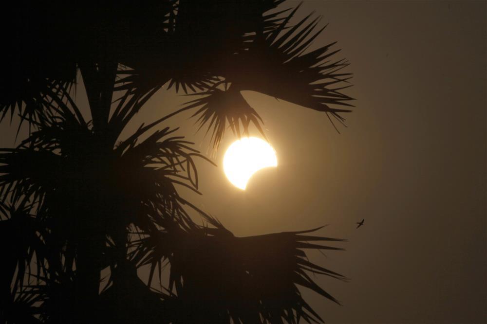45 Fotos De Sol
