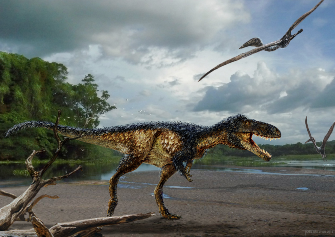 Asi Se Convirtio El Tyrannosaurus Rex En El Rey De Los Dinosaurios Del Cretacico Los mejores juegos de dinosaurios gratis est�n en juegos 10.com. asi se convirtio el tyrannosaurus rex
