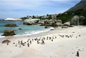 Boulders Beach, Ciudad del Cabo