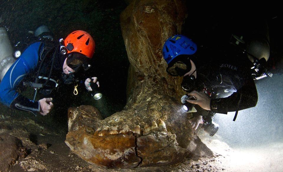 Increíbles hallazgos en las cuevas ancestrales de Yucatán
