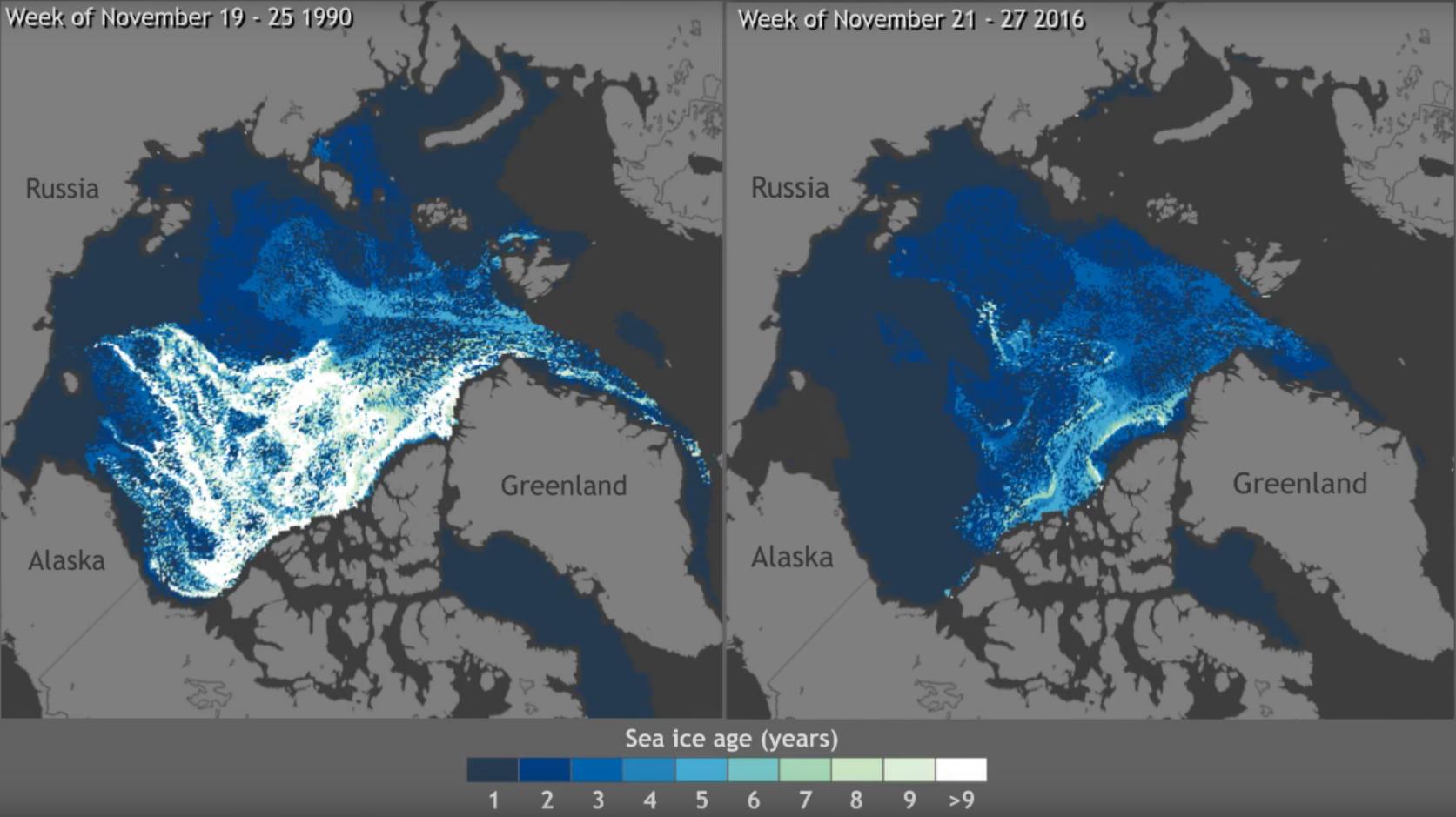 Disminución del volumen de hielo 1990 / 2016