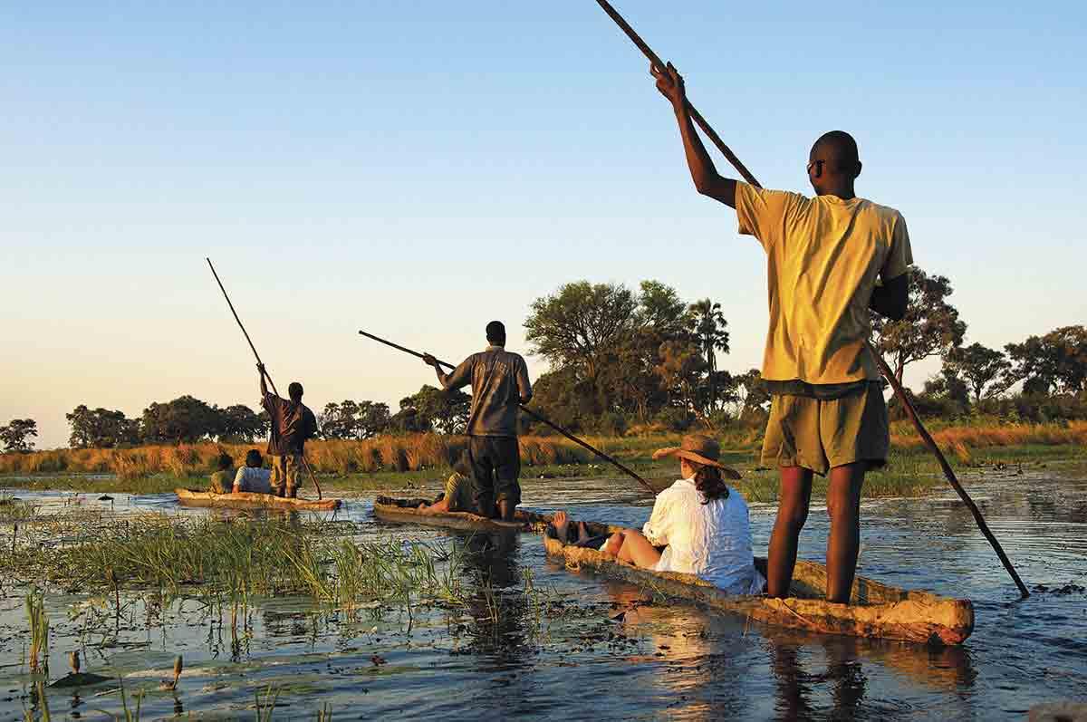 Safaris sobre el agua