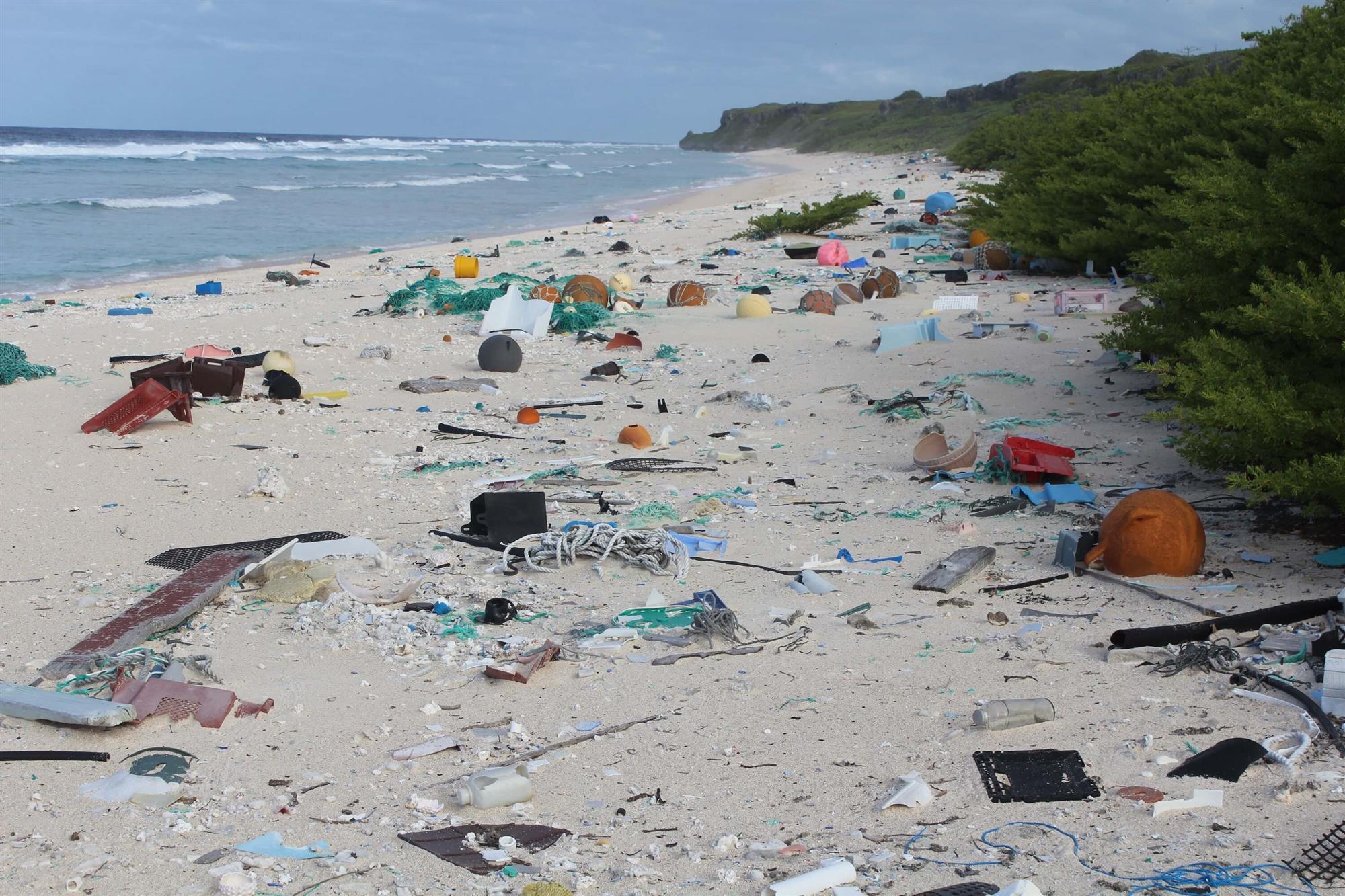 Aquí se encuentra la mayor densidad de desechos plásticos del planeta