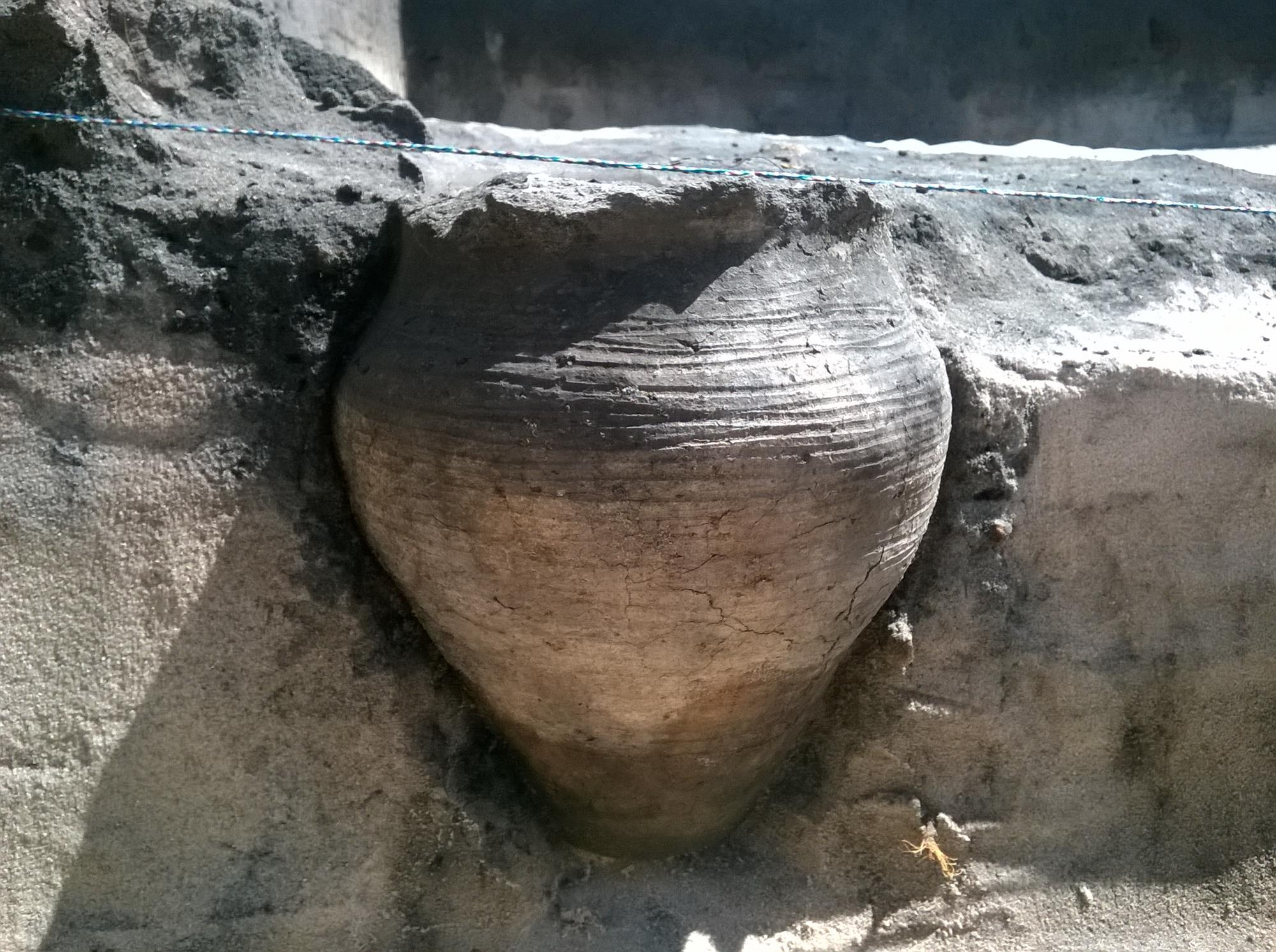 Una vasija medieval intacta contenía un brebaje que fue ofrecido a los dioses