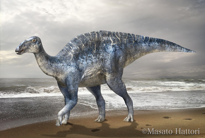 Descubierto el esqueleto completo de dinosaurio más grande de Japón