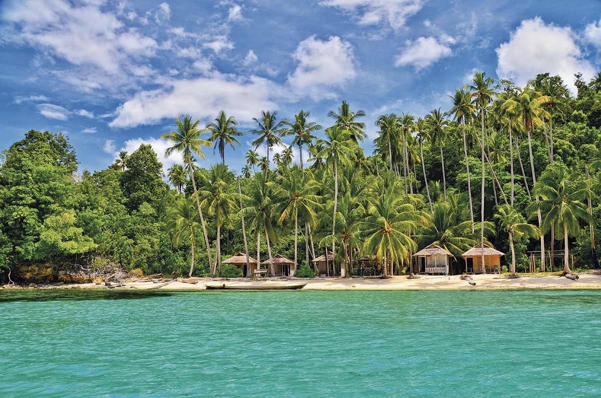 NVI-10018876. Islas Togean