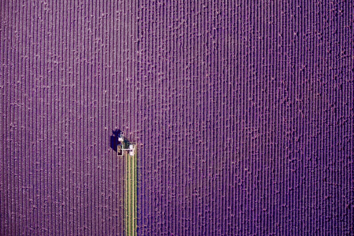 Las mejores fotos del año realizadas con drones