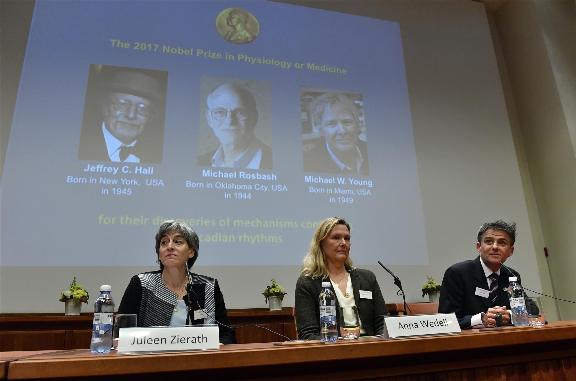 El Premio Nobel de Fisiología de 2017 al funcionamiento del reloj biológico interno