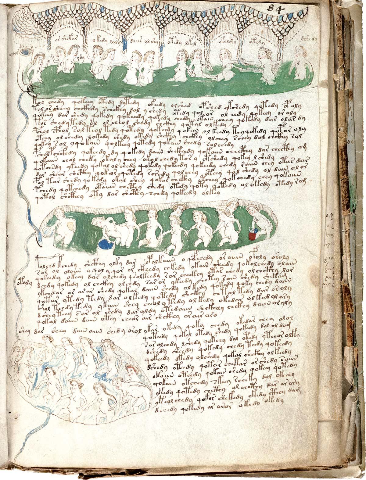codice-voynich-mujeres. Mujeres bañándose