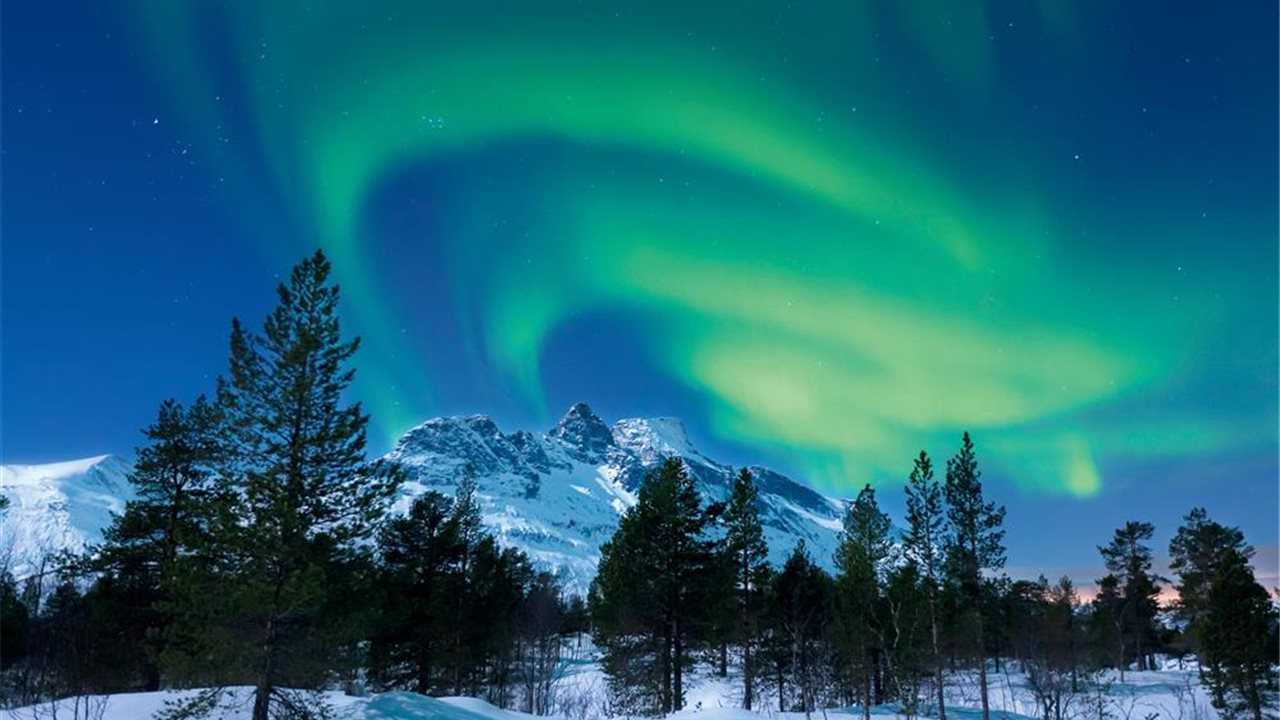 boreales