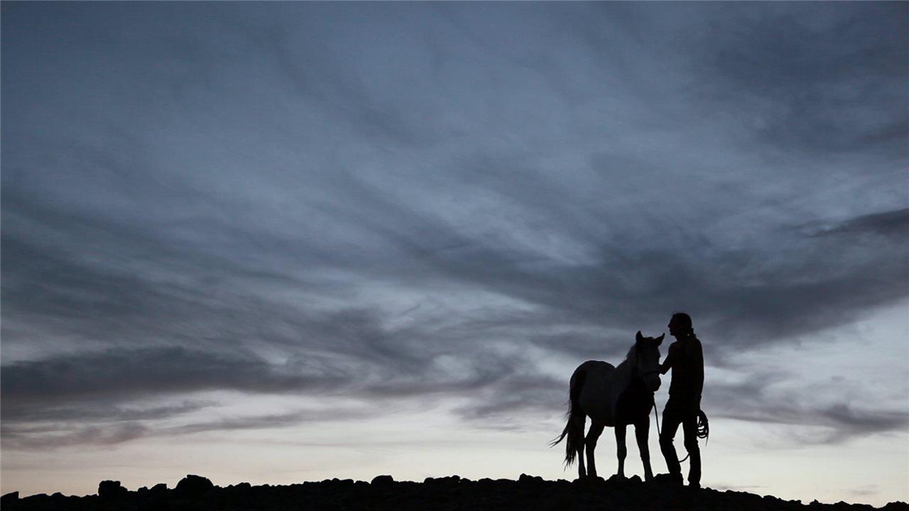 Nativos Americanos El Caballo Y El Nuevo Mundo