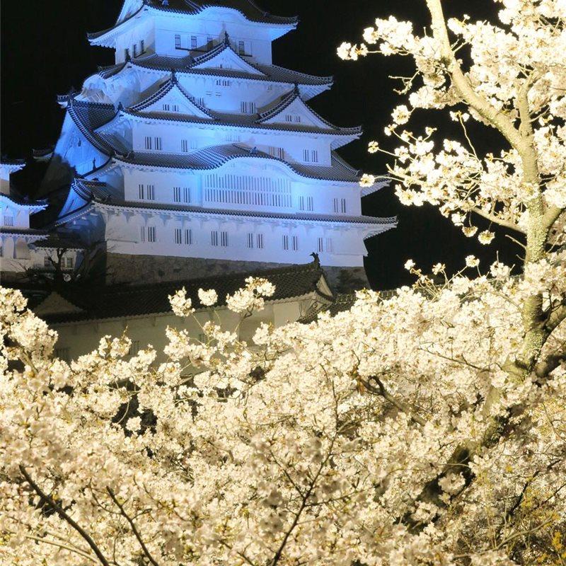 El Castillo Himeji, un símbolo del Japón feudal