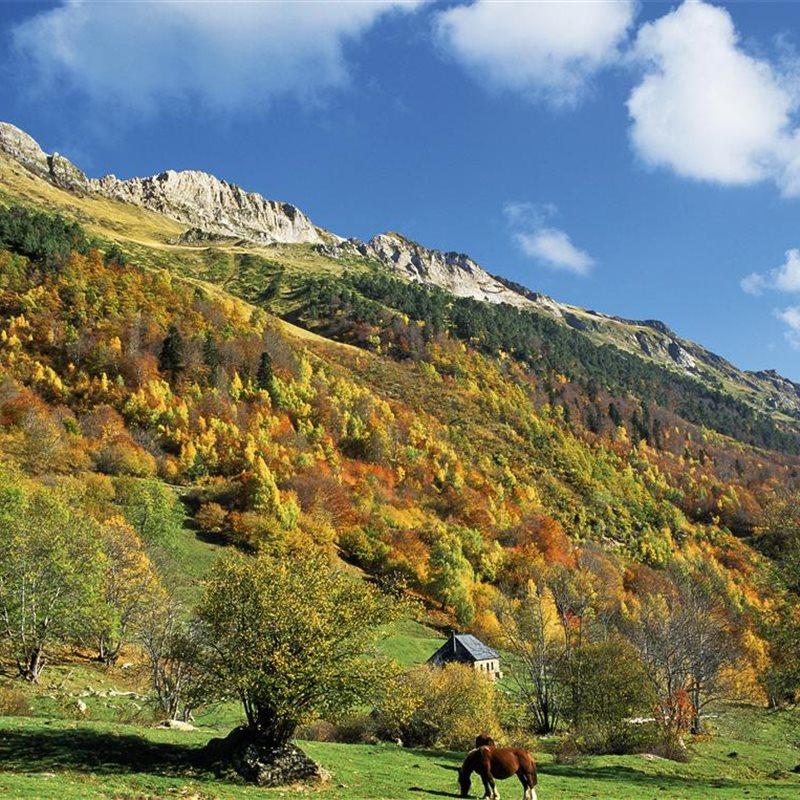 Valle de ar n - Inmobiliarias valle de aran ...