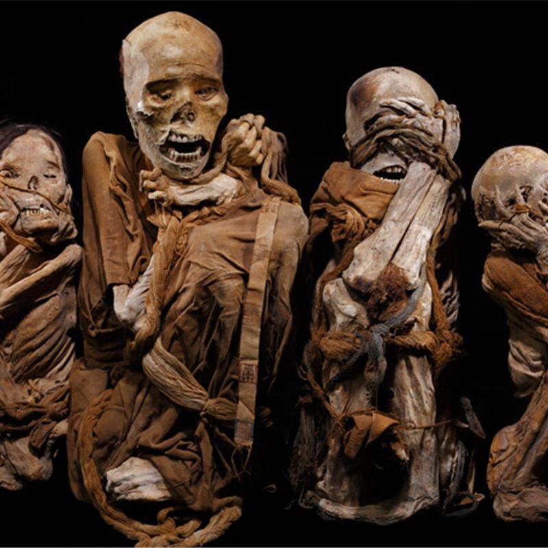 Momias incas embalsamadas
