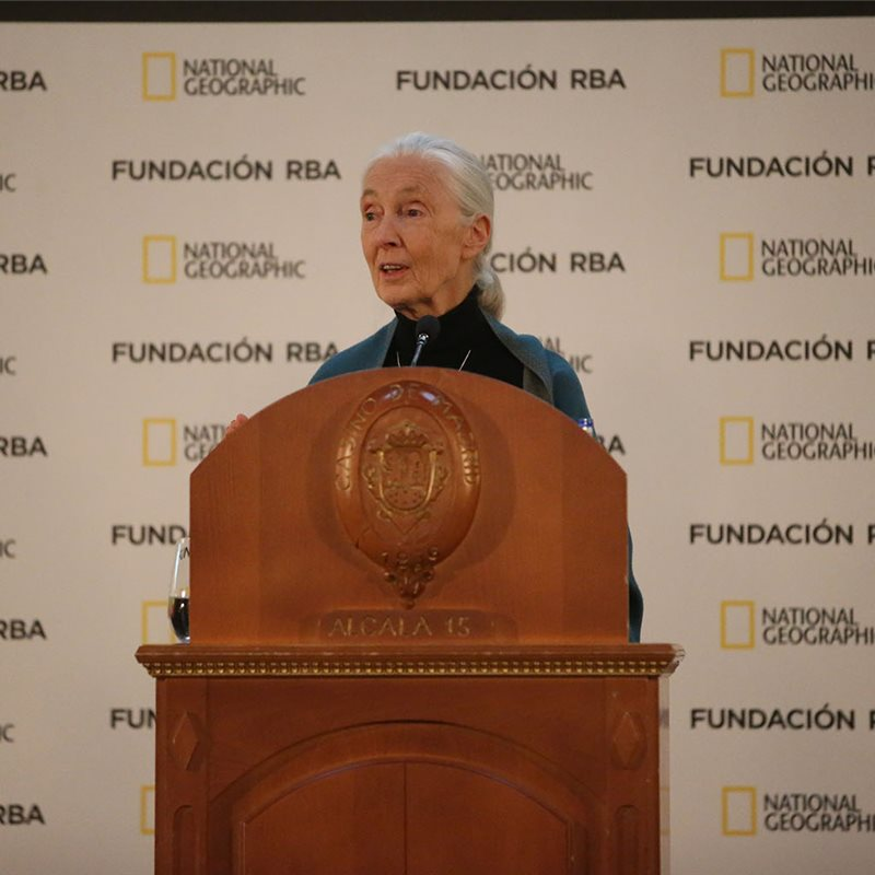 Conferencia completa de Jane Goodall en Madrid