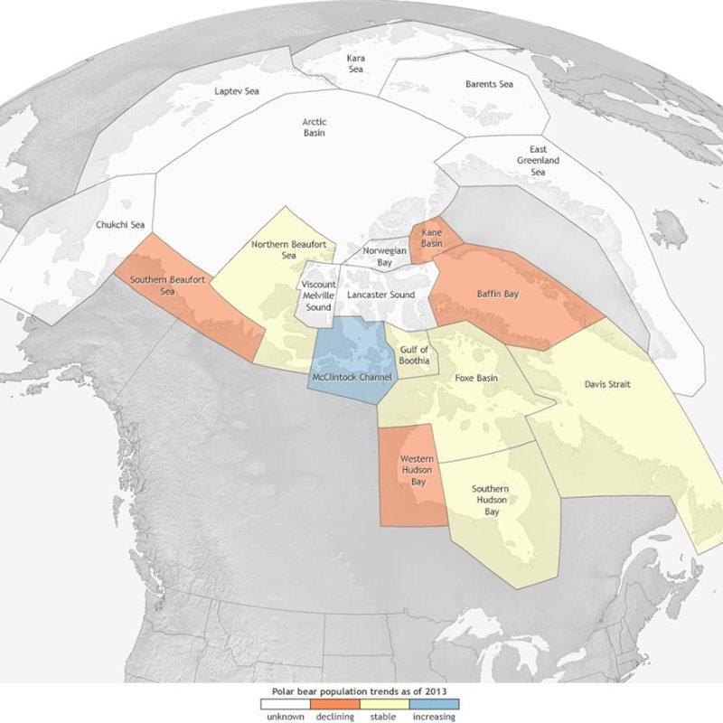 11 formas de ver cómo el Cambio Climático amenaza el Ártico