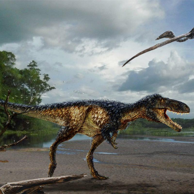 Así se convirtió el Tyrannosaurus rex en el rey de los dinosaurios del Cretácico