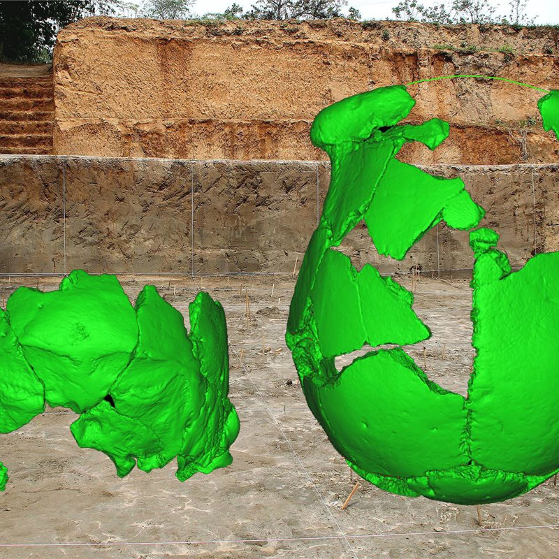 2 cráneos excavados en China tienen rasgos de los neandertales y de los humanos modernos