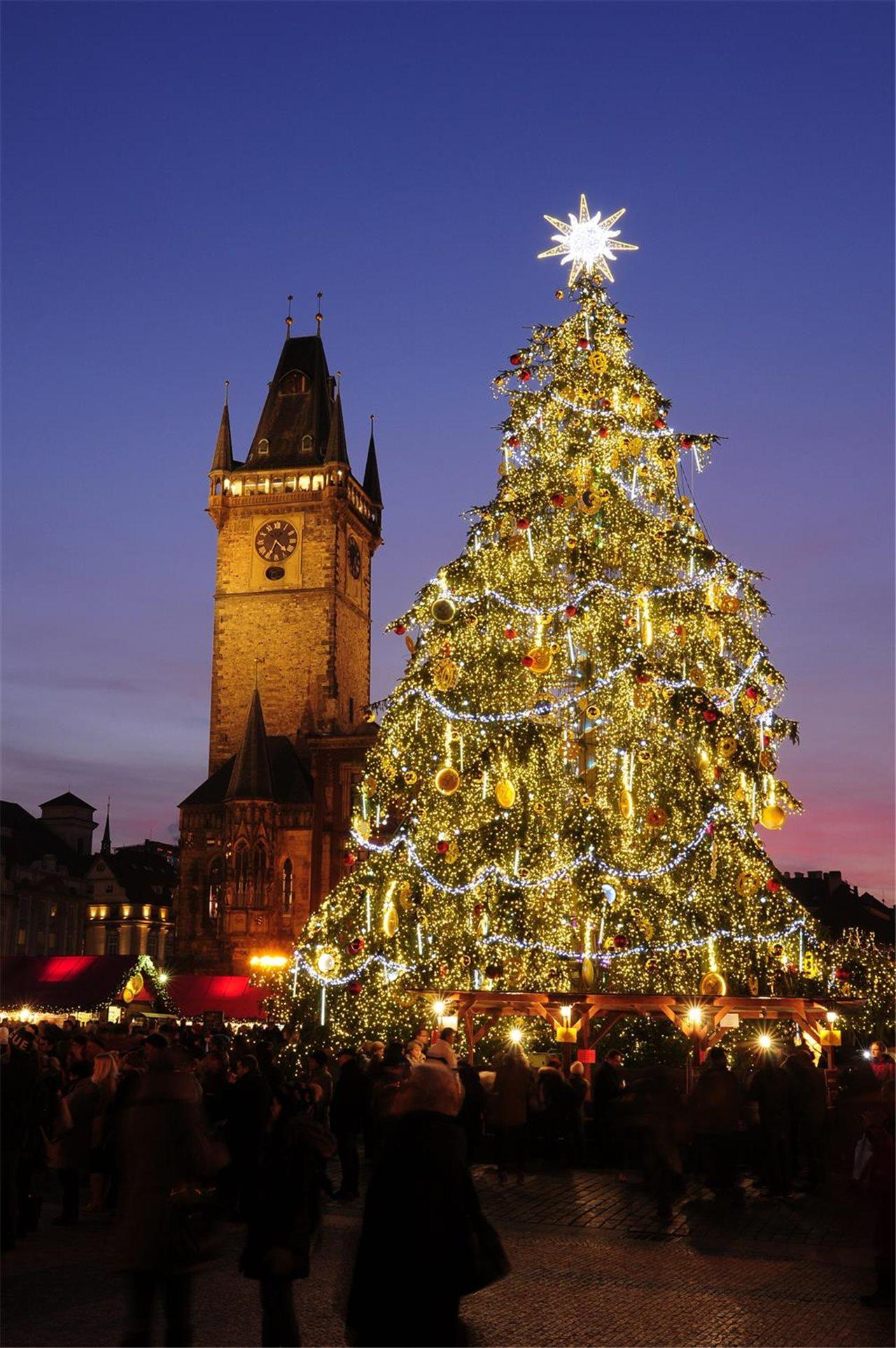 De d nde viene el rbol de navidad - Arboles de navidad de chuches ...