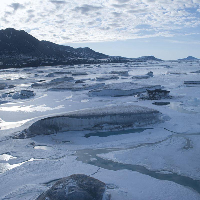Vida microbiana en los hielos del Ártico