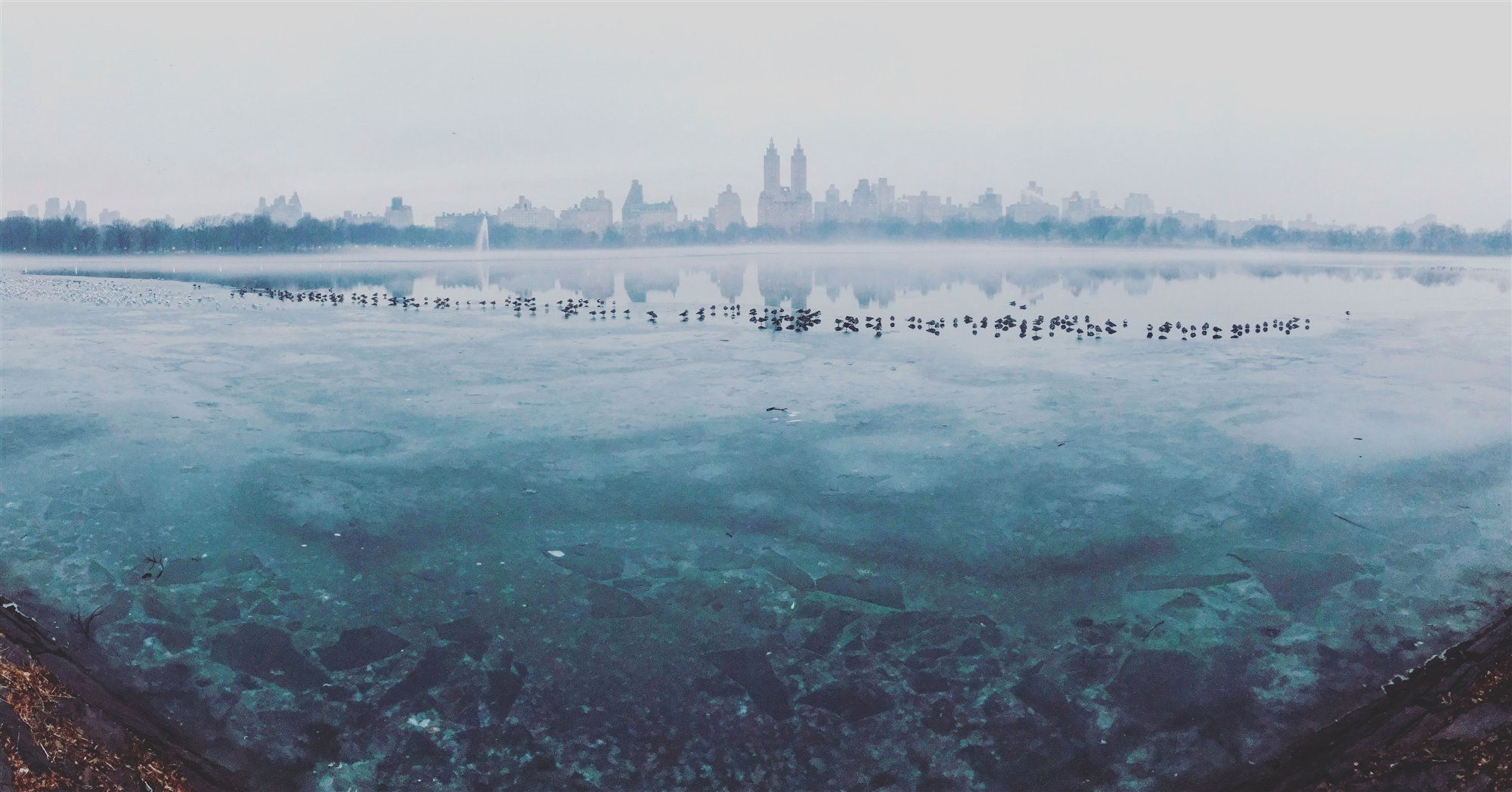"35-2nd-PANORAMA-. ""Frozen Central Park"" (Central Park Helado)"