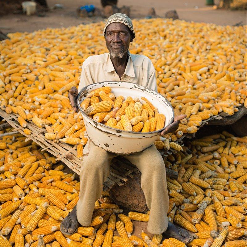 Cinco pasos para alimentar al mundo