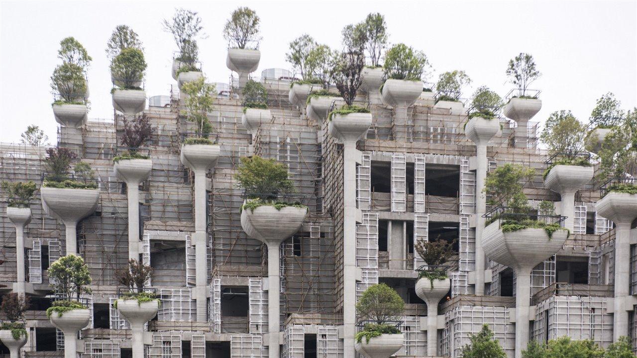 Los Nuevos Jardines De Babilonia