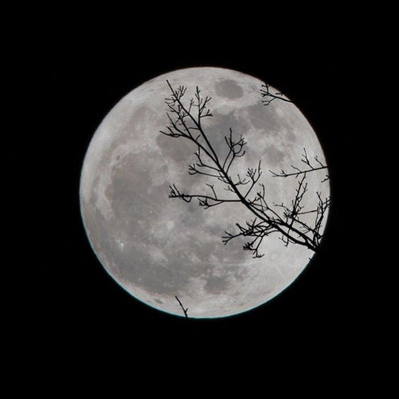 Los distintos tipos de Luna llena