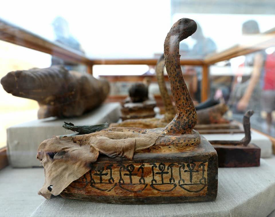 Ataúdes con forma de cobra y, al fondo a la izquierda, uno con forma de cocodrilo. Foto: Ministry of Antiquities, Egypt